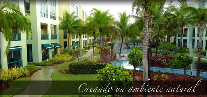 New Garden Design Inc Landscape Contractors Puerto Rico